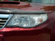 Subaru Forester 2008-2012 - Защита передних фар, прозрачная, EGR  фото, цена