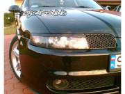 Seat Leon 1999-2004 - Реснички на фары, комплект 2 штуки, (UA) фото, цена