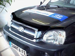 Hyundai Santa Fe 2001-2006 - Дефлектор капота (мухобойка) SIM фото, цена
