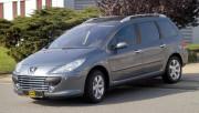 Peugeot 307 2002-2008 - Решетка радиатора (Cobra)  SW фото, цена