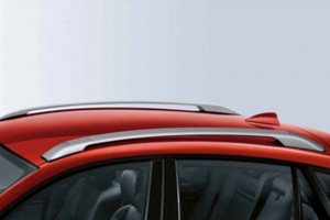 BMW X6 2008-2010 - Рейлинги к-т 2 шт. (Цвет: серебро). фото, цена
